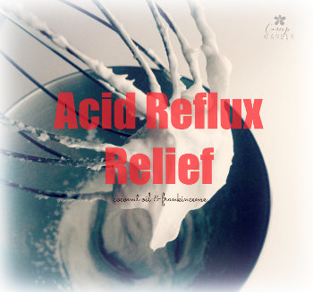 Acid Reflux Relief Coconut Whip