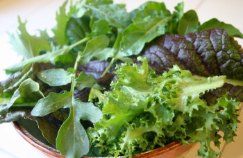 Salad as part of Acid Reflux Diet Recipes